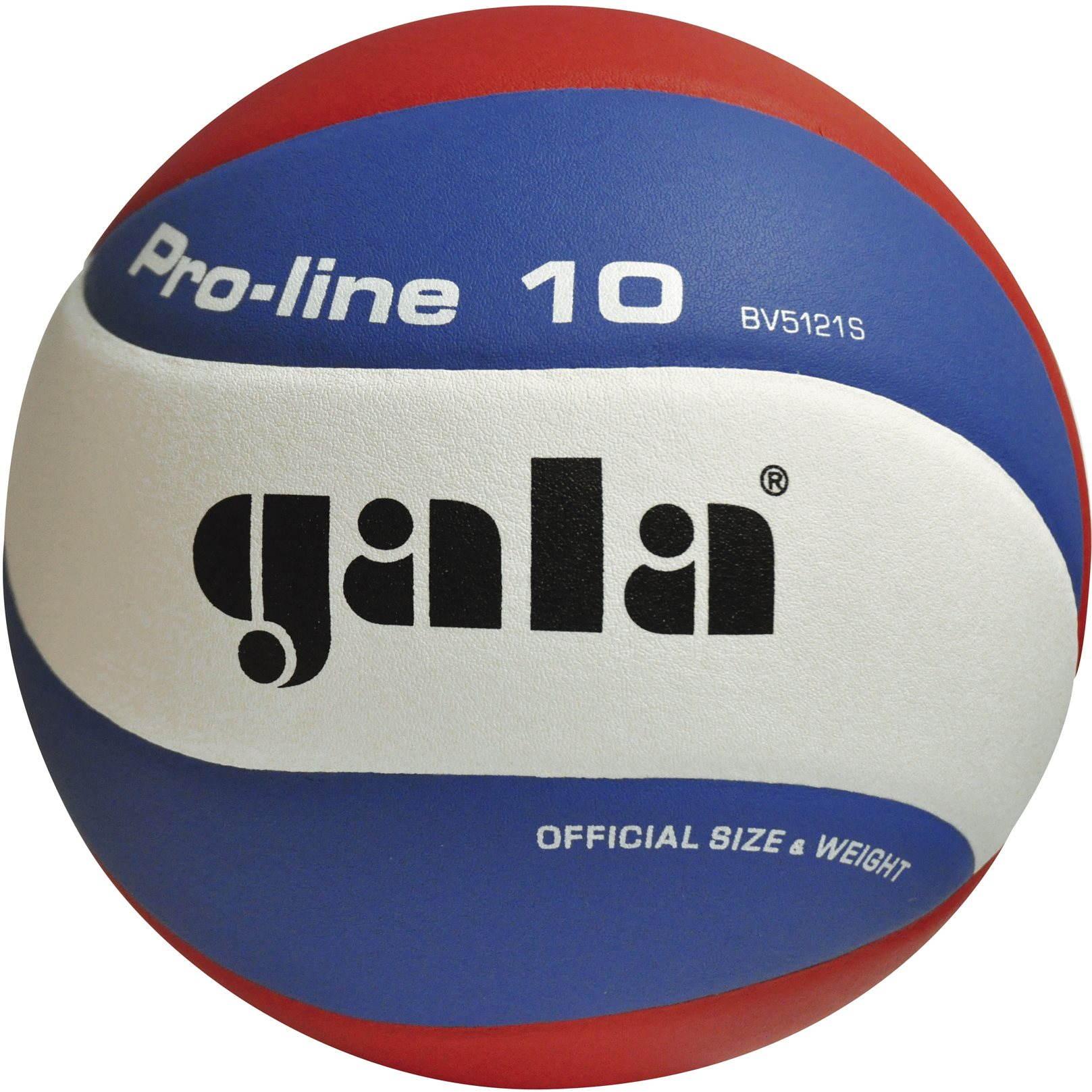 Volejbalový míč Gala Pro Line BV 5121 S