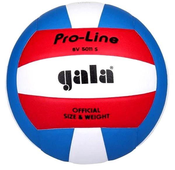 Volejbalový míč Gala BV 5011 S
