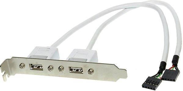 Příslušenství USB Bracket se 2 konektory ze základní desky