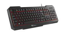 Herní klávesnice Natec Genesis RX11, US,podsvícení